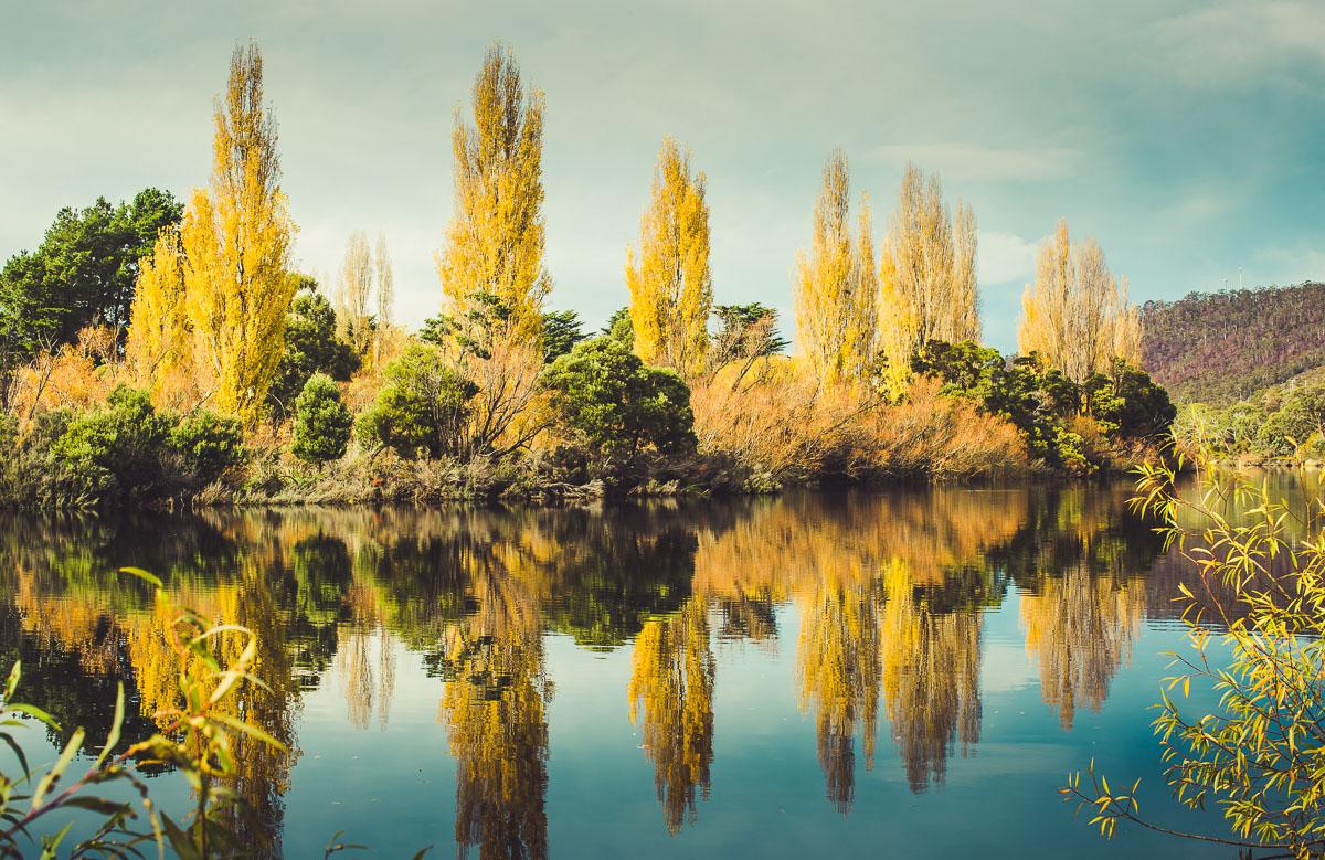 Derwent River, New Norfolk