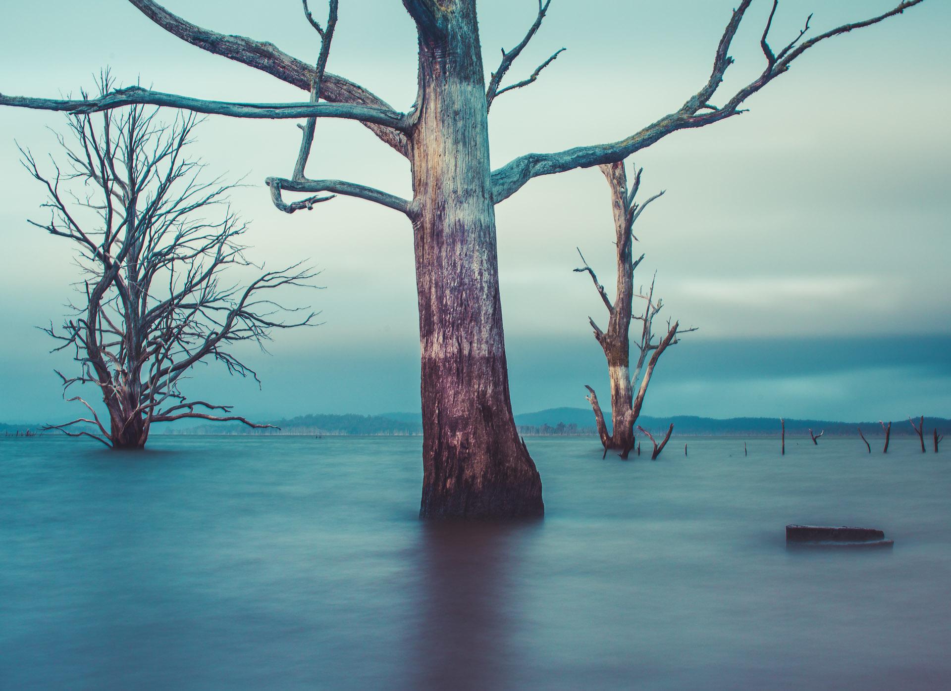Arthurs Lake
