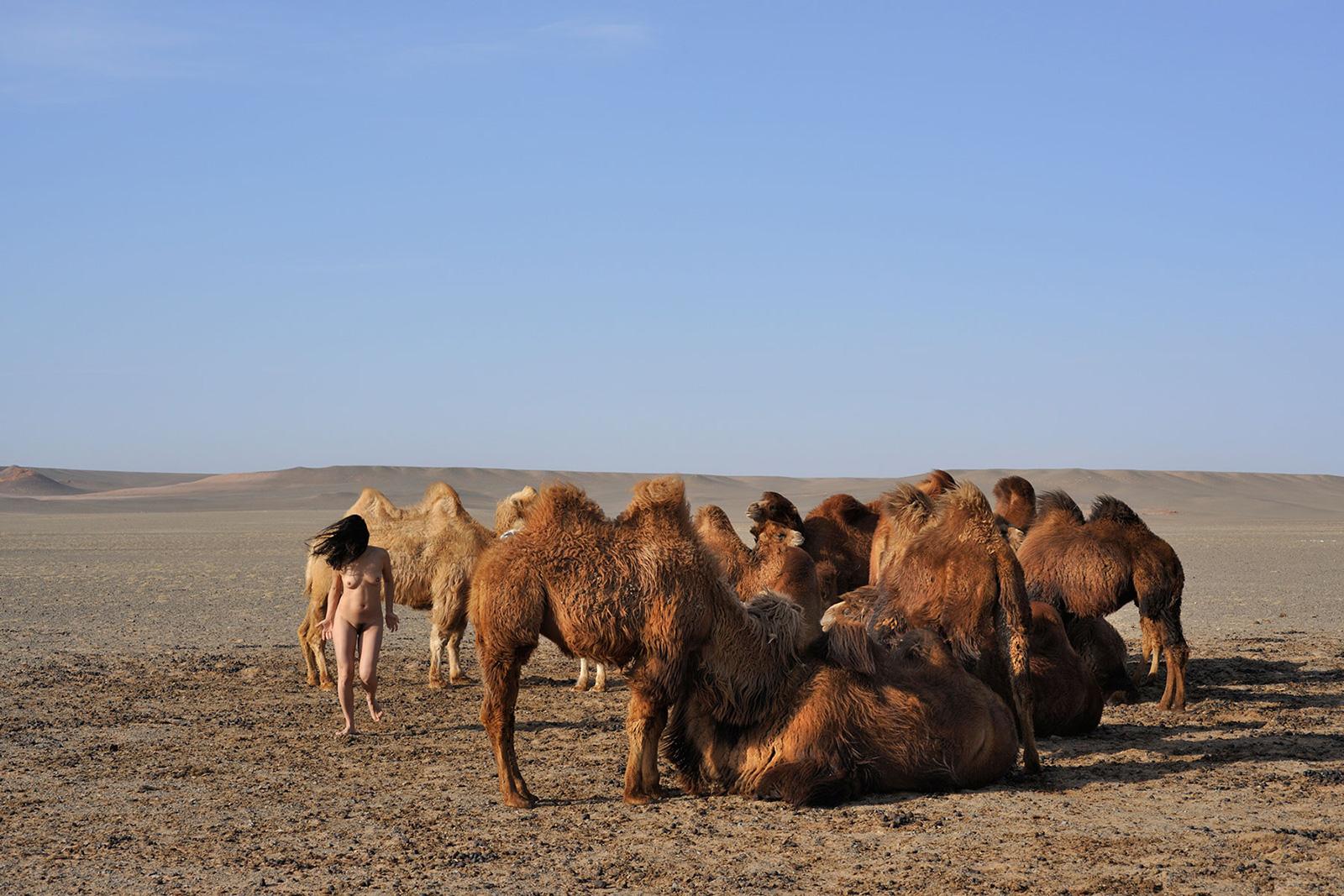 Bayanzag, <br>Mongolia, Gobi 2