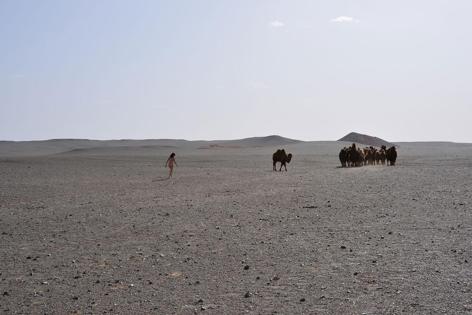Bayanzag, <br>Mongolia, Gobi 1