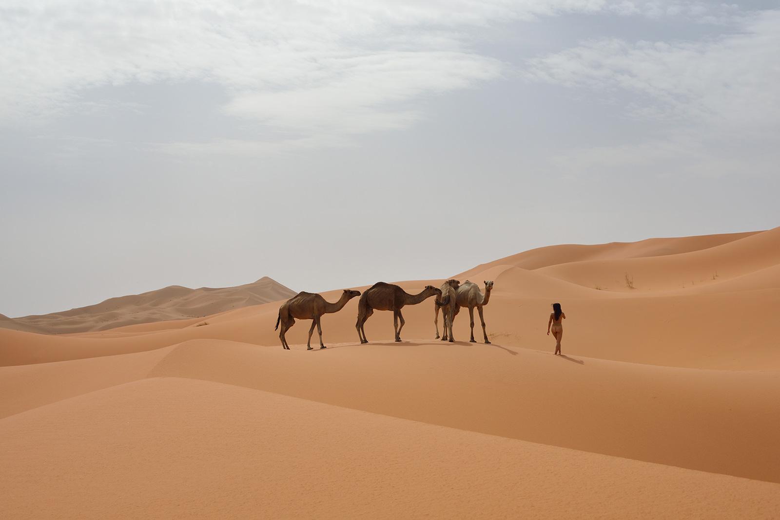 Erg Chebbi, <br>Morocco, Sahara 1
