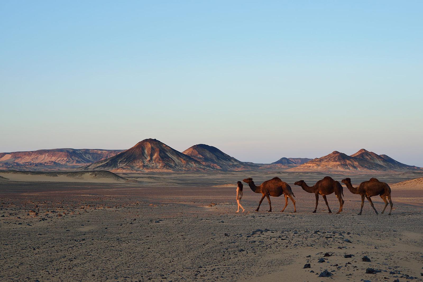 Black Desert, <br>Egypt, Sahara