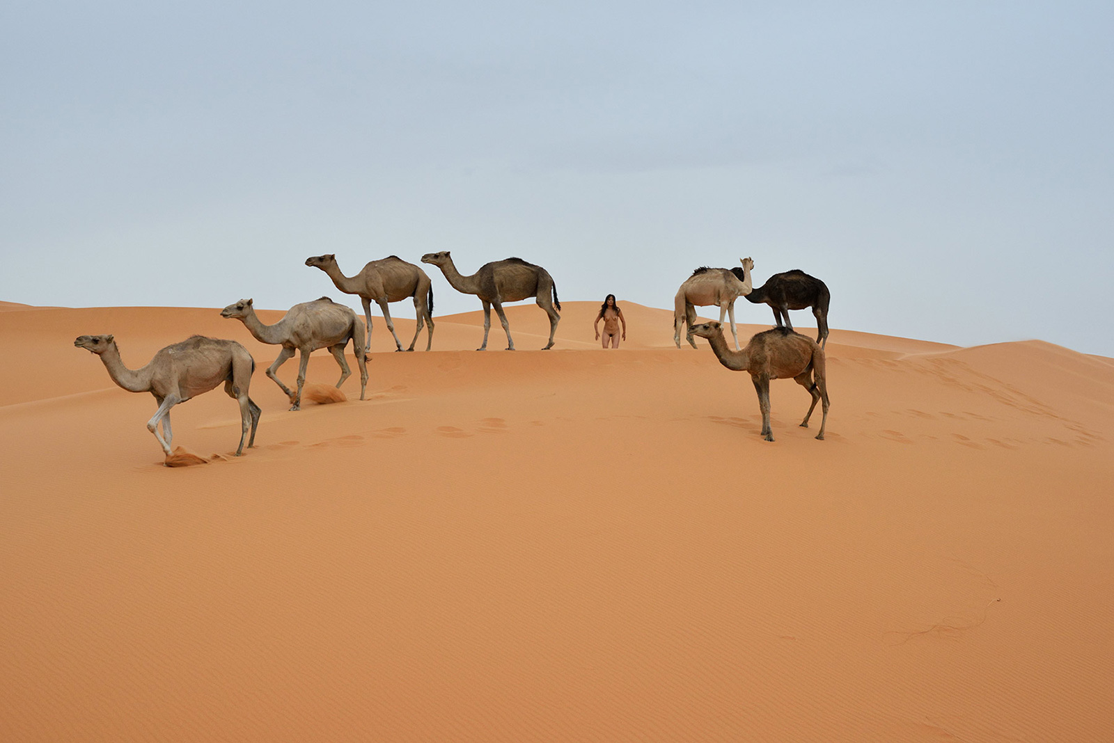 Erg Chebbi, <br>Morocco, Sahara 4
