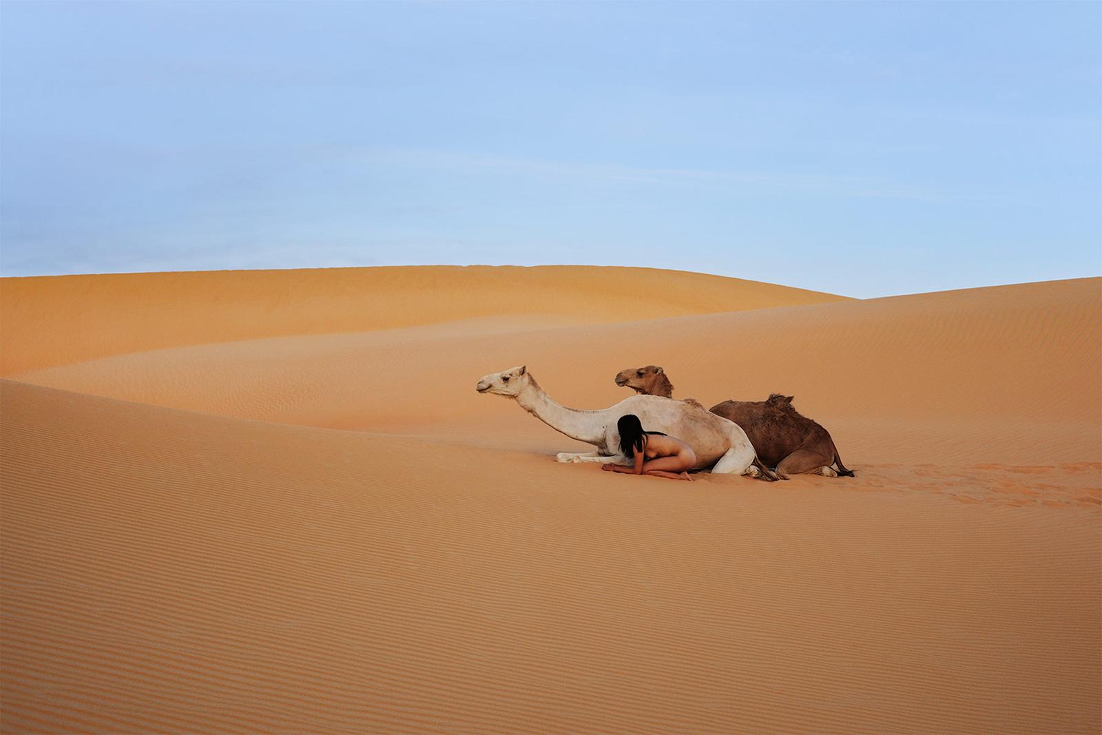 Sahel, Mali, Sahara