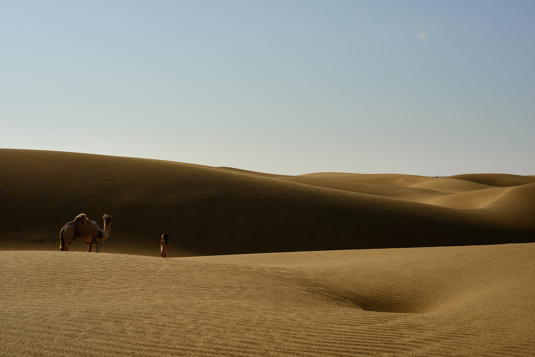 Siyala Dunes, <br>India, Thar Desert 4