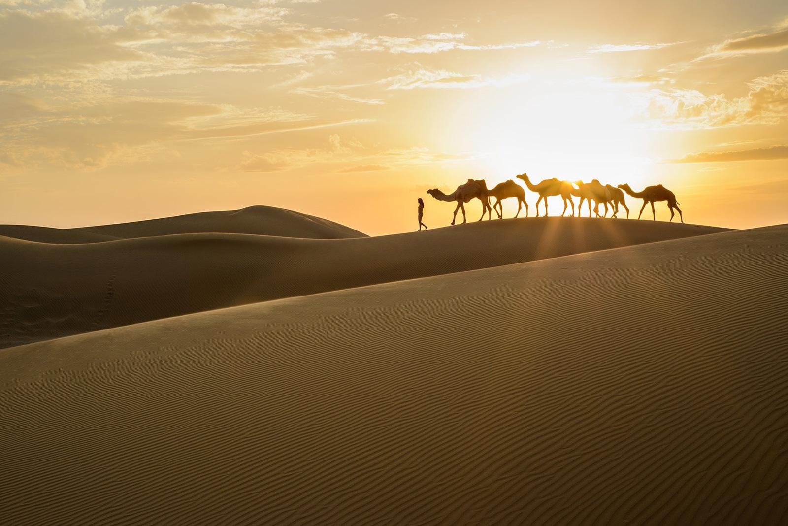 Siyala Dunes, <br>India, Thar Desert 5