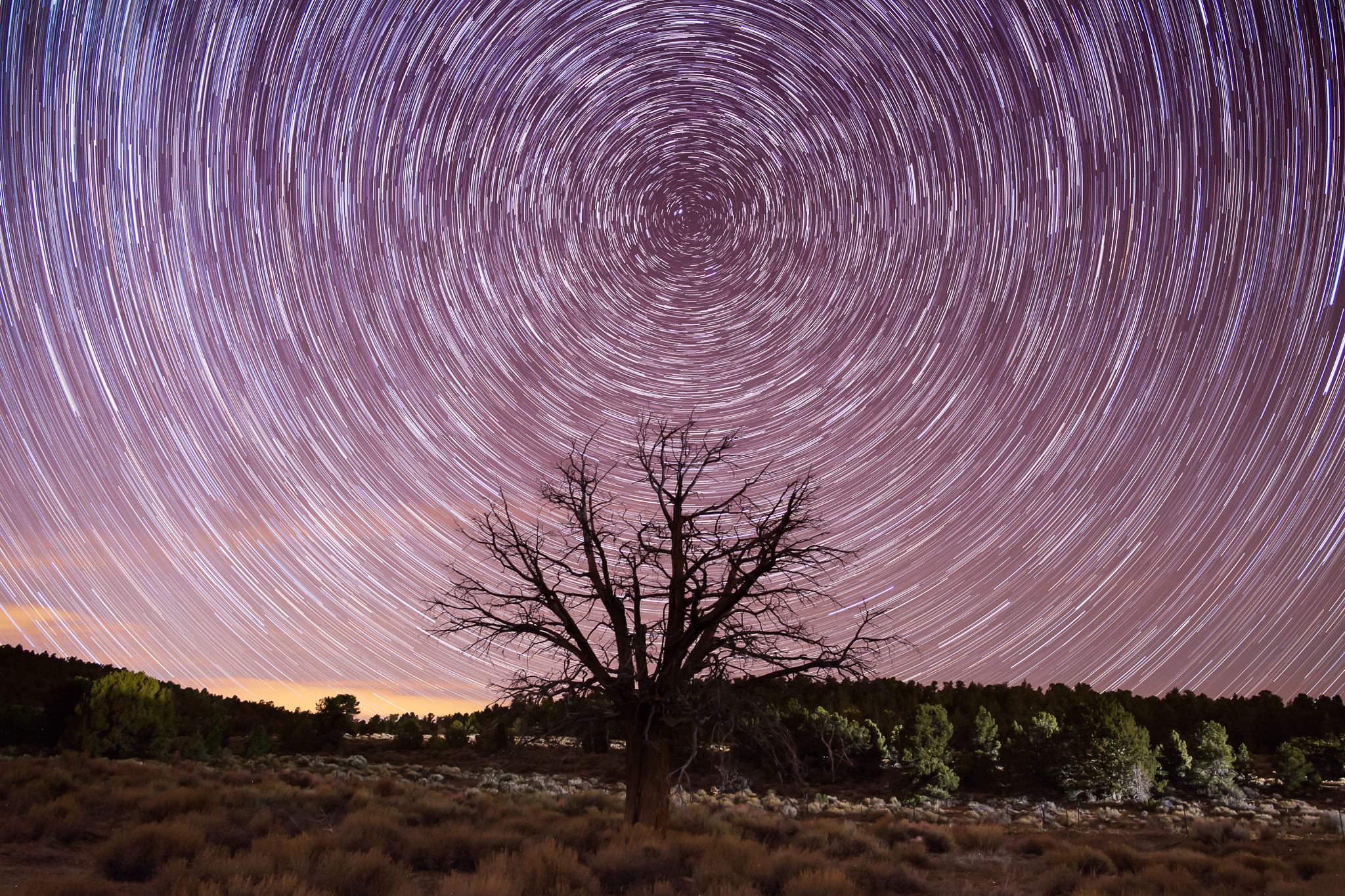 BBStarTrails_69_Feb26-1.jpg