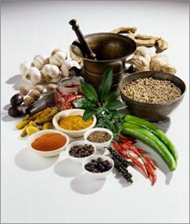 food-herbs.png