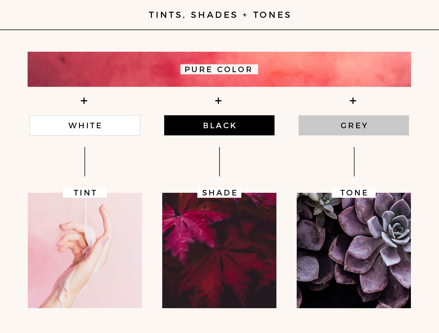 Add interest to your brand and website color scheme by adding tints, shades and tones to your scheme