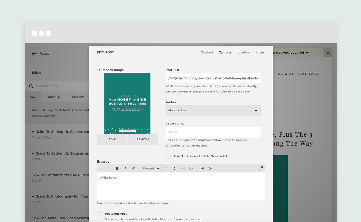Blog post options panel in Squarespace explained