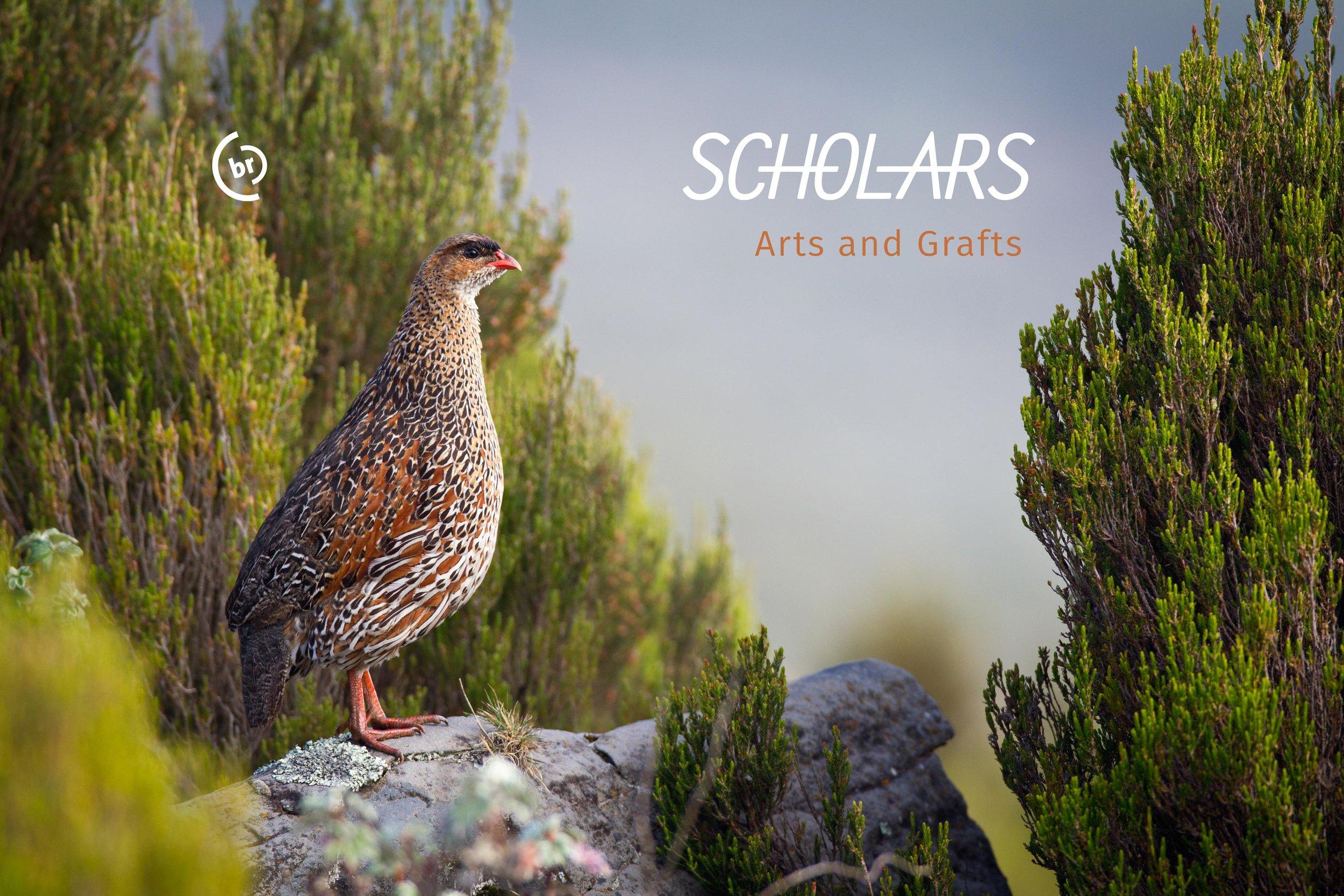 Scholars-ArtsAndGrafts-WEBheader-3672.jpg
