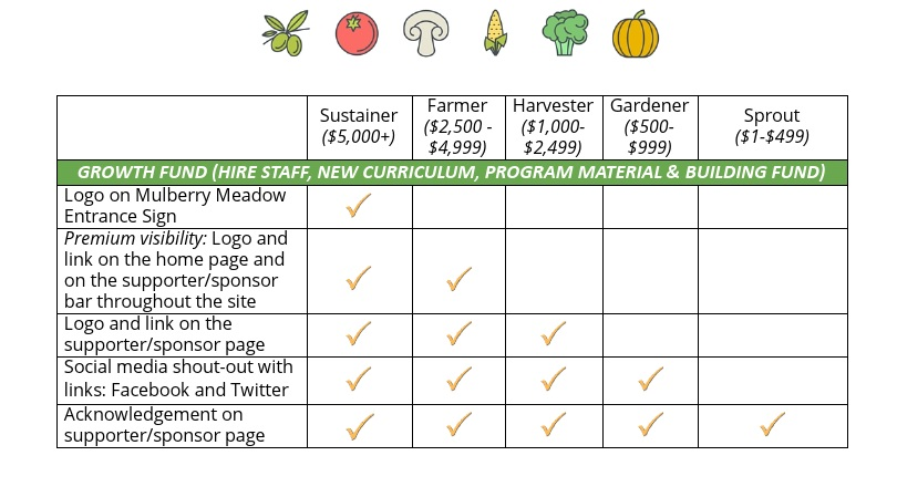 Mulberry+Meadow+Farm+School+Donor+and+Sponsorship+Opportunities3.jpg