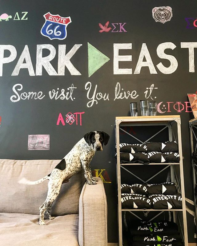 Park East really can't get enough of pets! Don't forget we ARE pet friendly! 😍 • Call us today to ask out our pet polices and set up a tour! 🐶🐶🐶