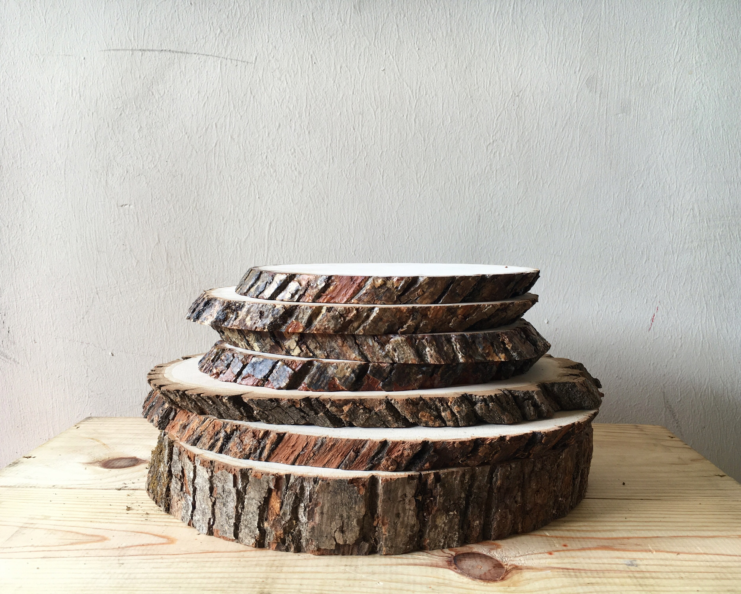 DT06 Wood Slices