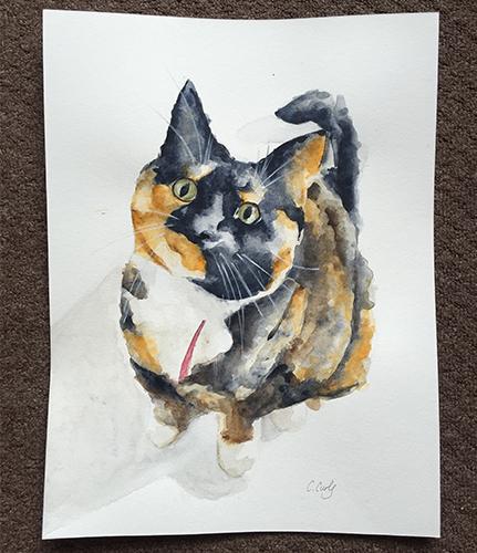 cat_500.jpg