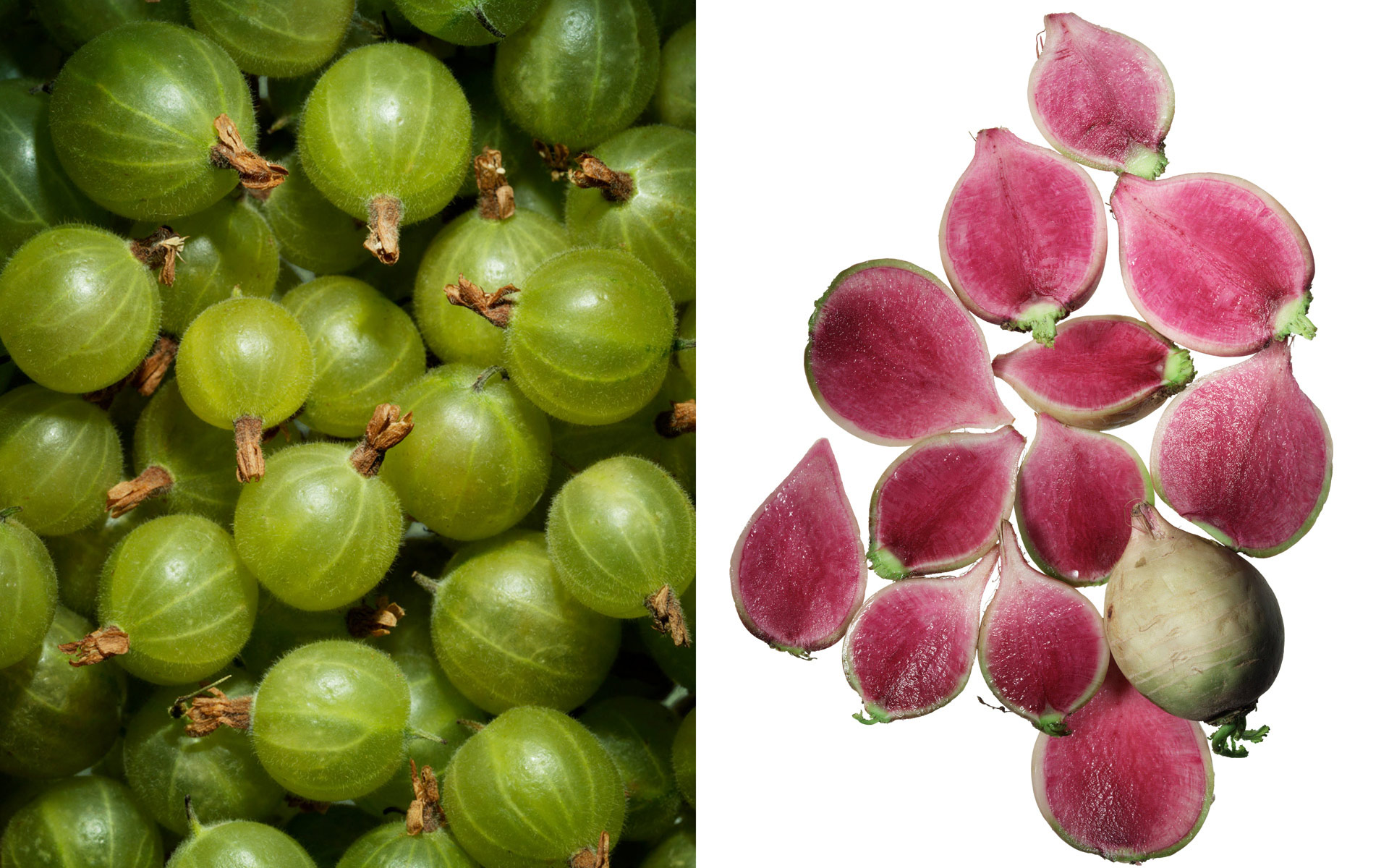 PR_grapes-radishs_sq.jpg