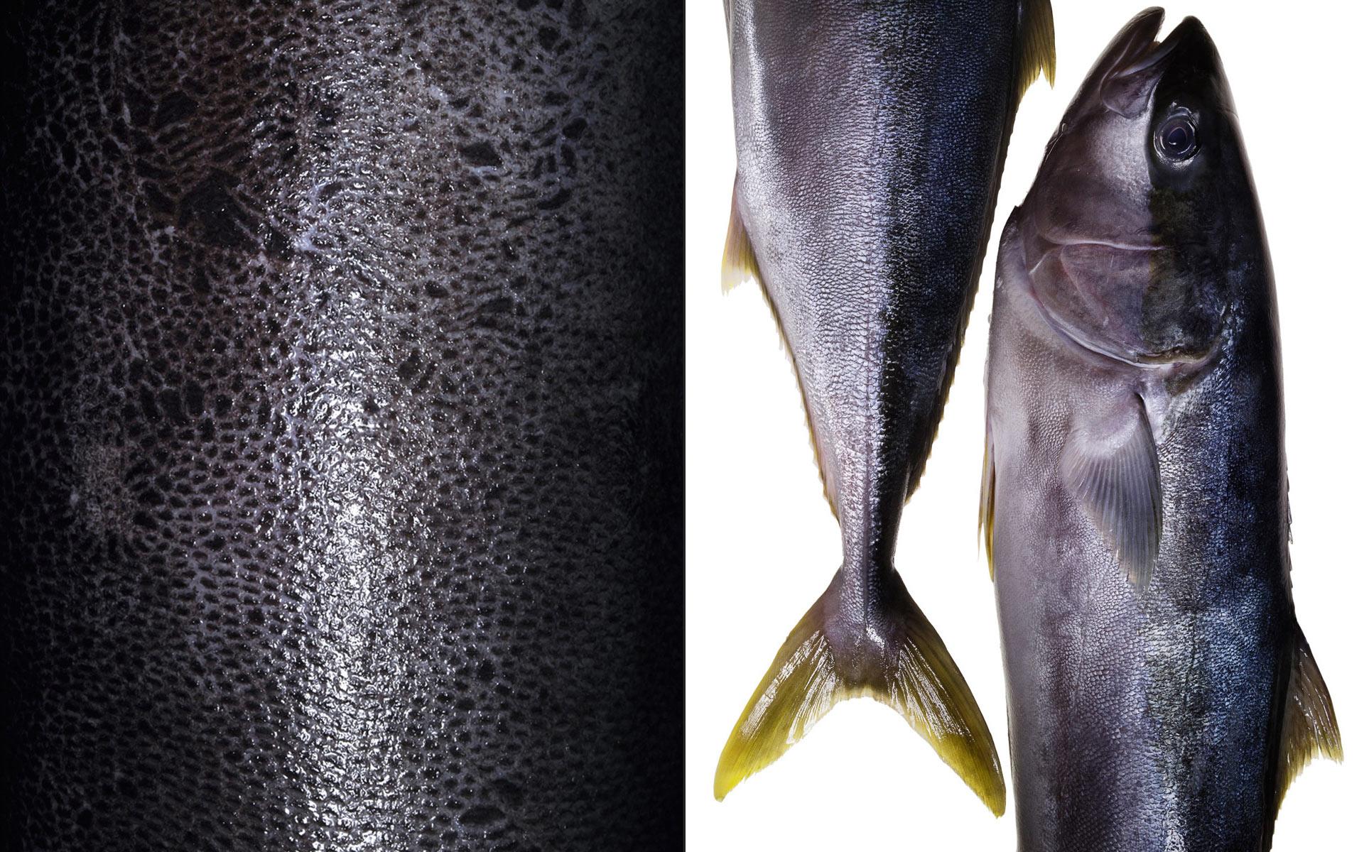 PR_DET_skin-fish_sq.jpg