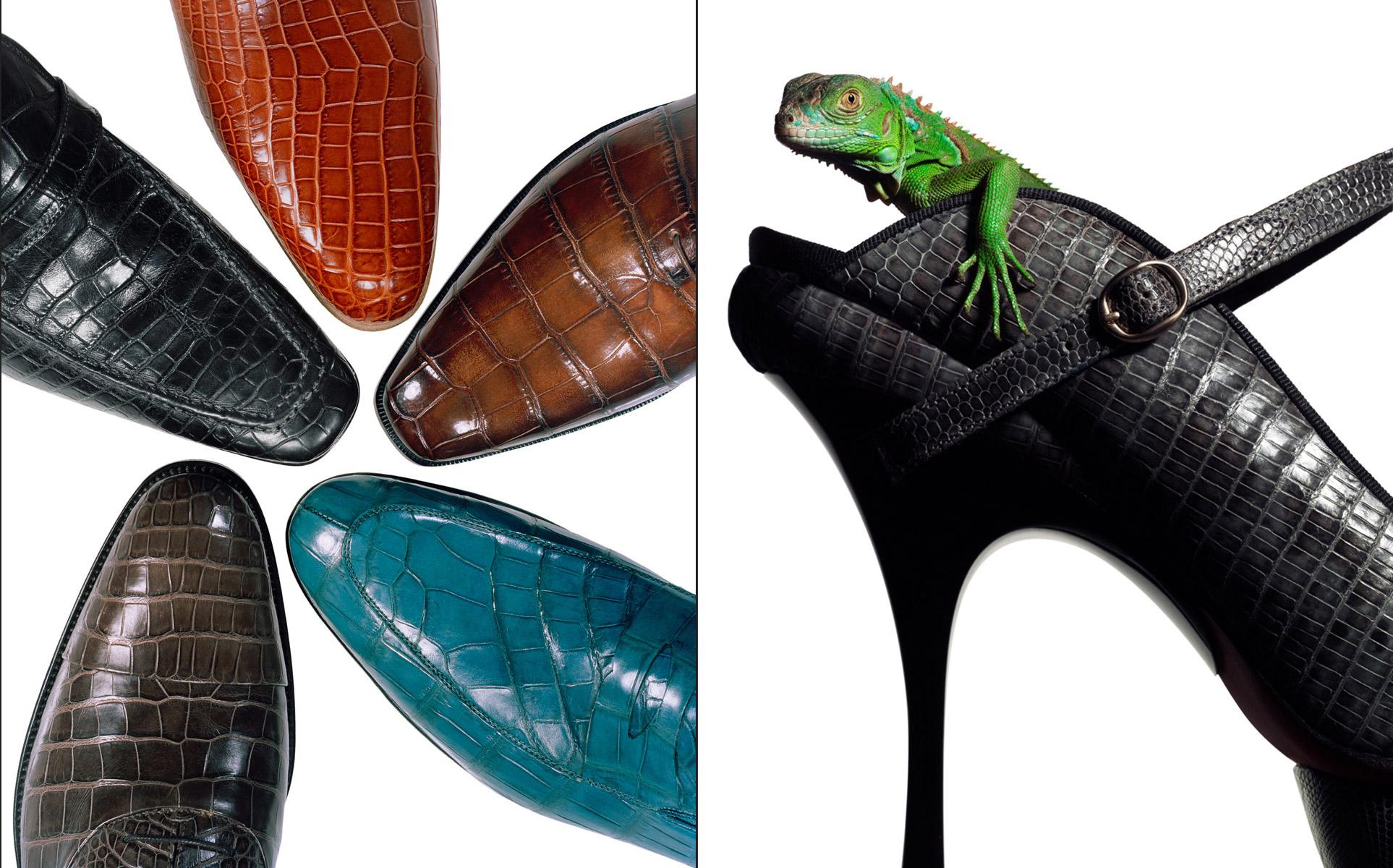 OV_shoe-lizard_sq.jpg