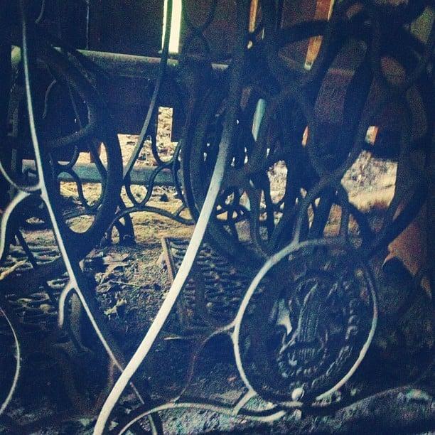instagram-digest-20121014-4.jpg