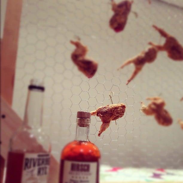 instagram-digest-20121121-4.jpg