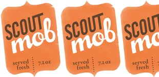 scout-mob-1.jpg