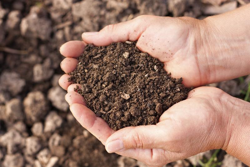 soil-in-hands-optibac-probiotics.jpg