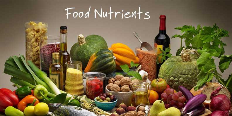 food-nutrients.jpg