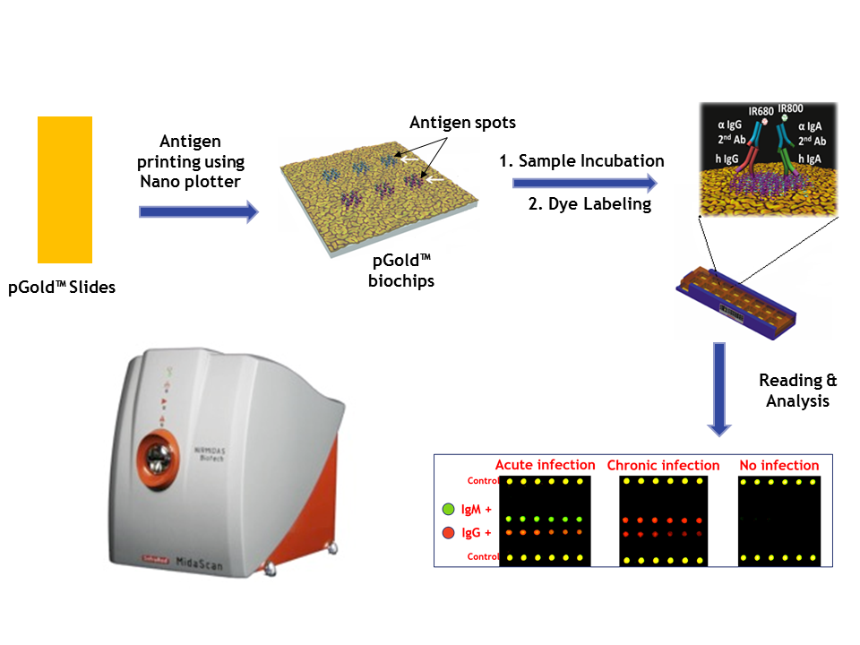 Nirmidas OptiMidas™ Microarray Platform