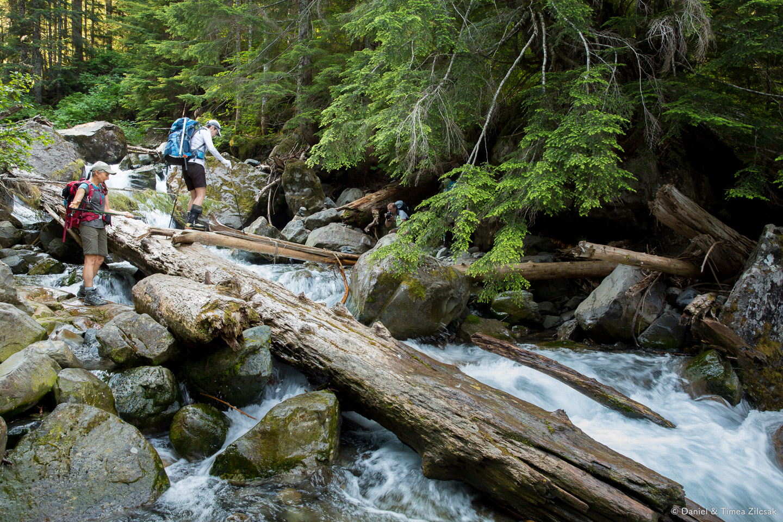 A narrow path across the creek