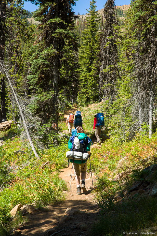 Trail to Navaho Peak is gentle most of the way up