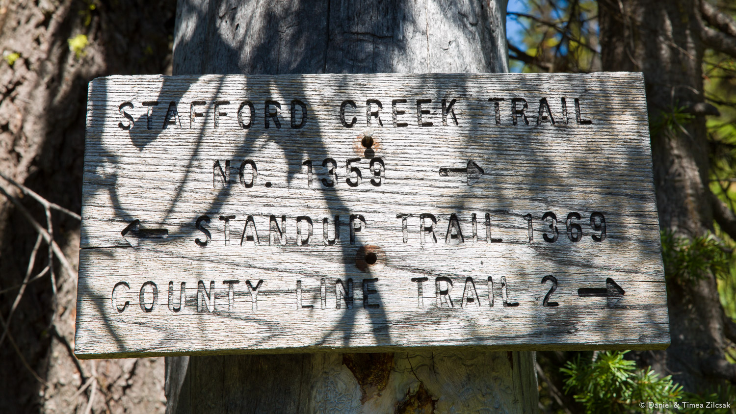 Junction with Standup Creek Trail at 3.8 miles
