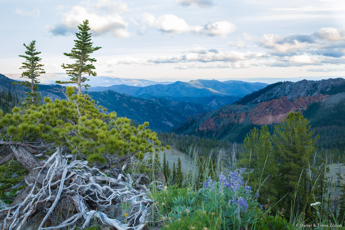 Evening view from Navaho Pass