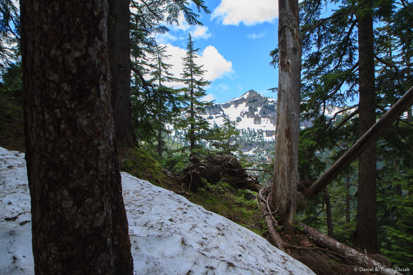 Silver Peak from the upper Cold Creek trail