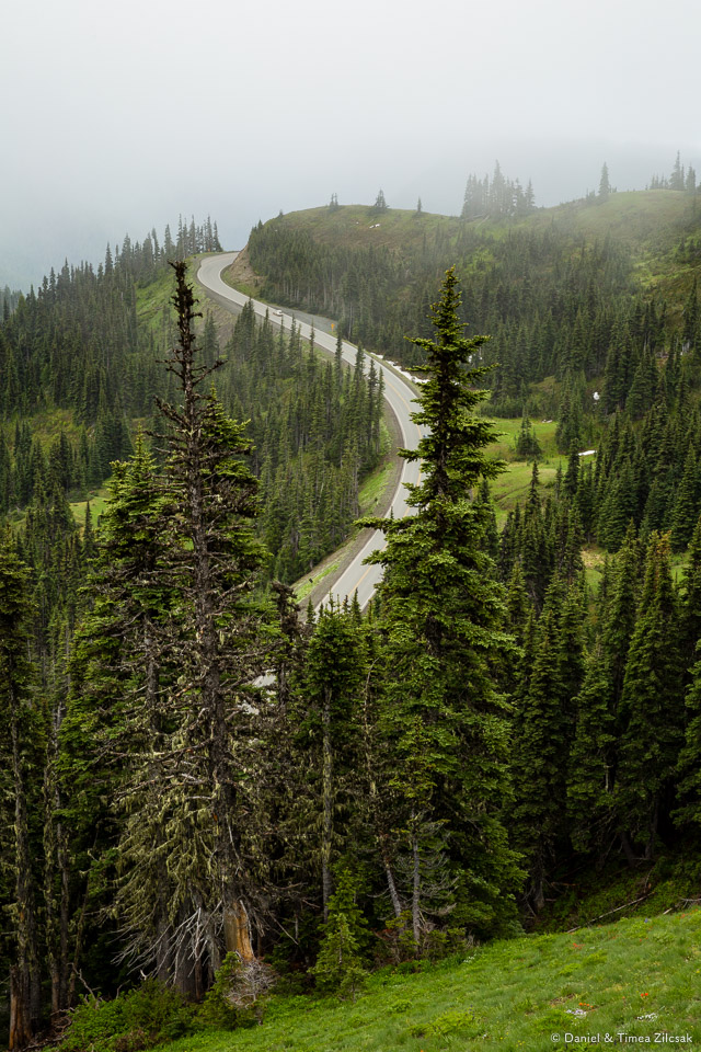 Road to Hurricane Ridge viewed from the trail to Mount Angeles