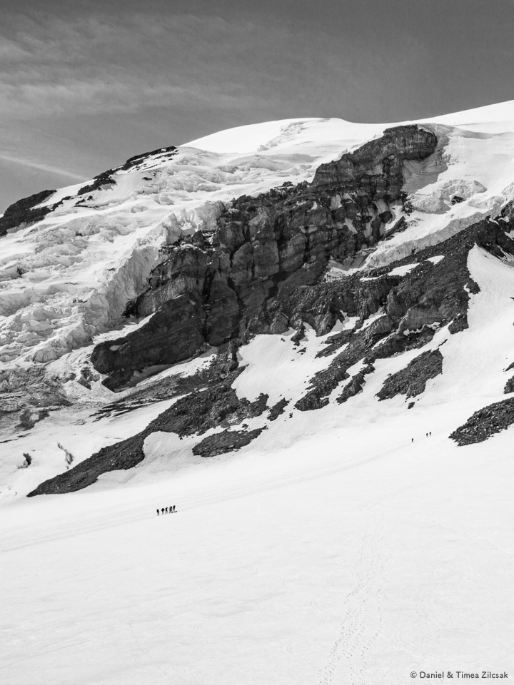 Pack of climbers on the Muir Snowfield below Nisqually Glacier, approx. 9600 ft high