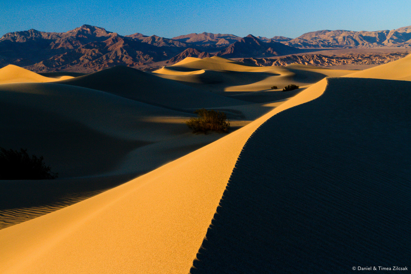 Mesquite Sand Dunes at Sunset, Death Valley National Park Top 10 Must See