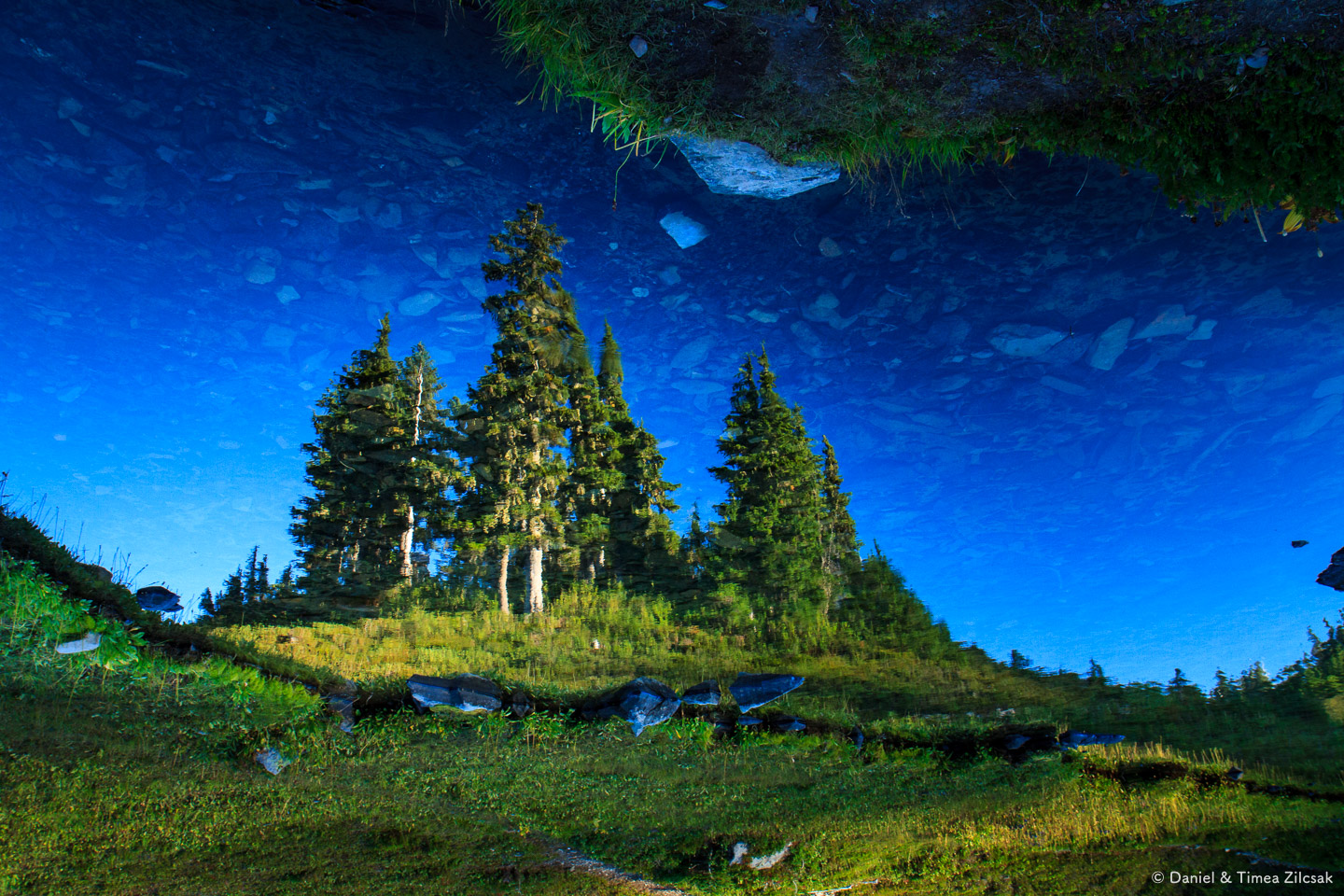 Heart Lake producing a fine upside down reflection, Backpacking the High Divide - Seven Lakes Basin Loop, Olympic National Park