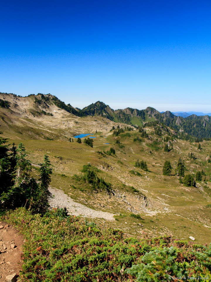View into a part of the Seven Lakes Basin, High Divide Trail, Ol