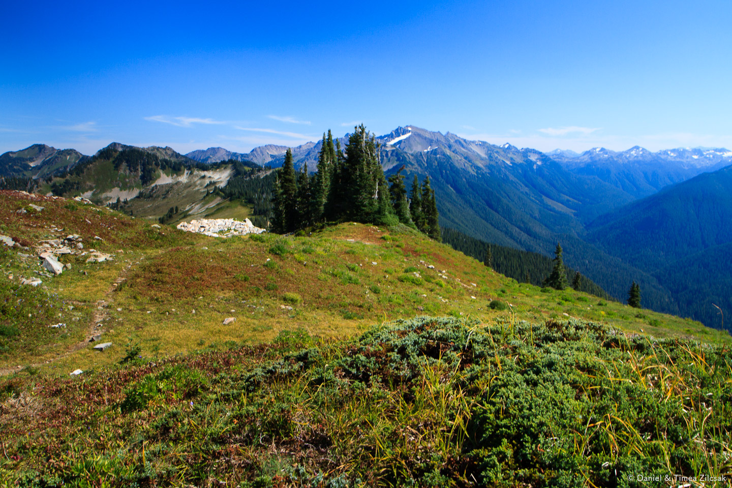 Looking east from the High Divide Trail, Olympic National Park