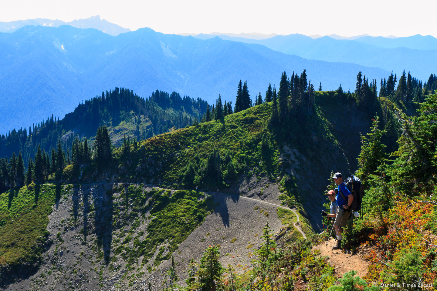 West view from Bogachiel Peak on the High Divide Trail, Olympic