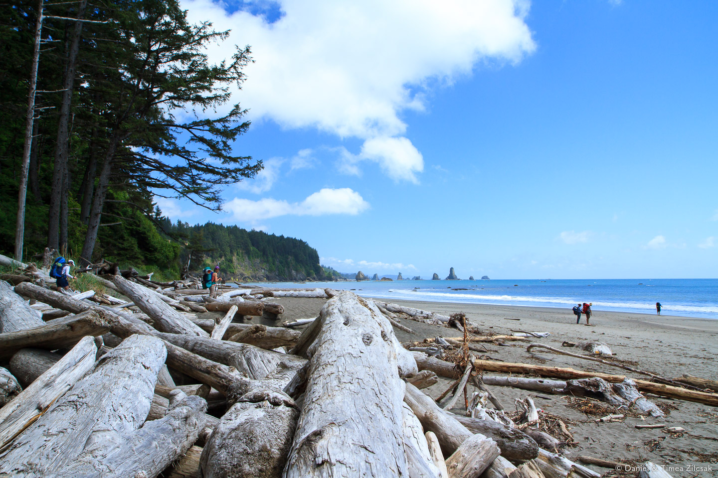 First view of the ocean at Strawberry Bay, Third Beach - Backpacking the South Coast Wilderness Trail, Olympic National Park