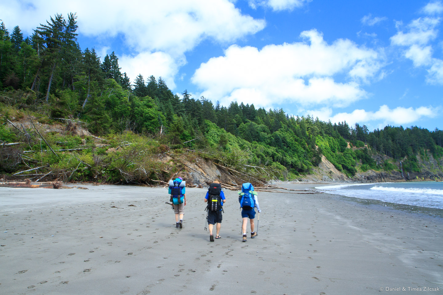 Land slide at Strawberry Bay - Backpacking the South Coast Wilderness Trail, Olympic National Park