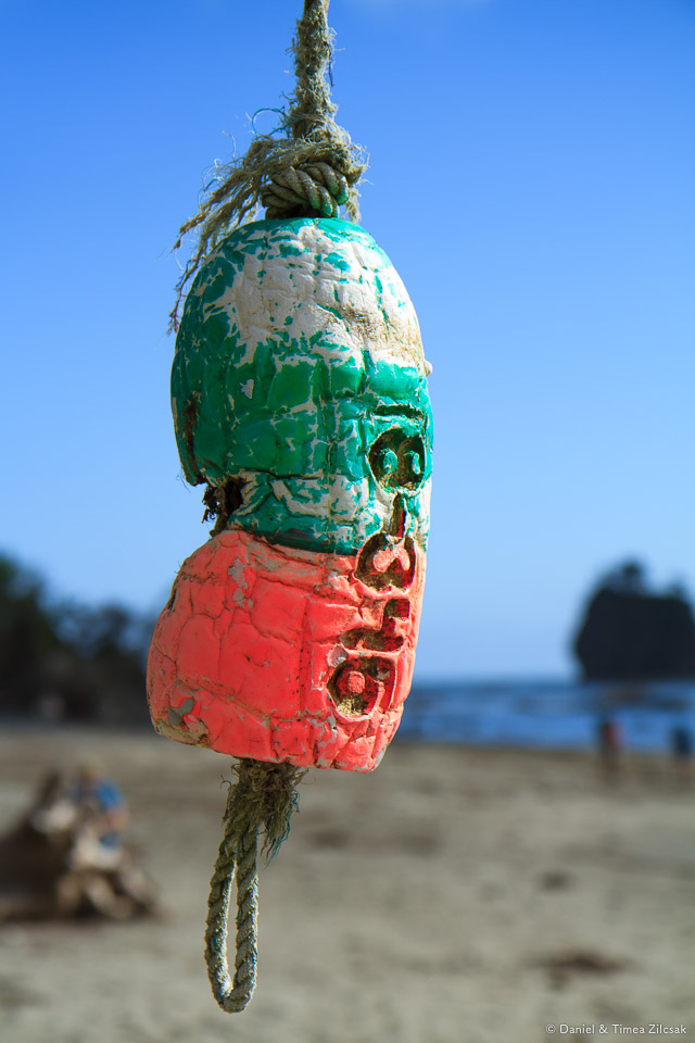 Colorful buoys at Scott Creek Camp on the South Coast Wilderness Trail, Olympic National Park
