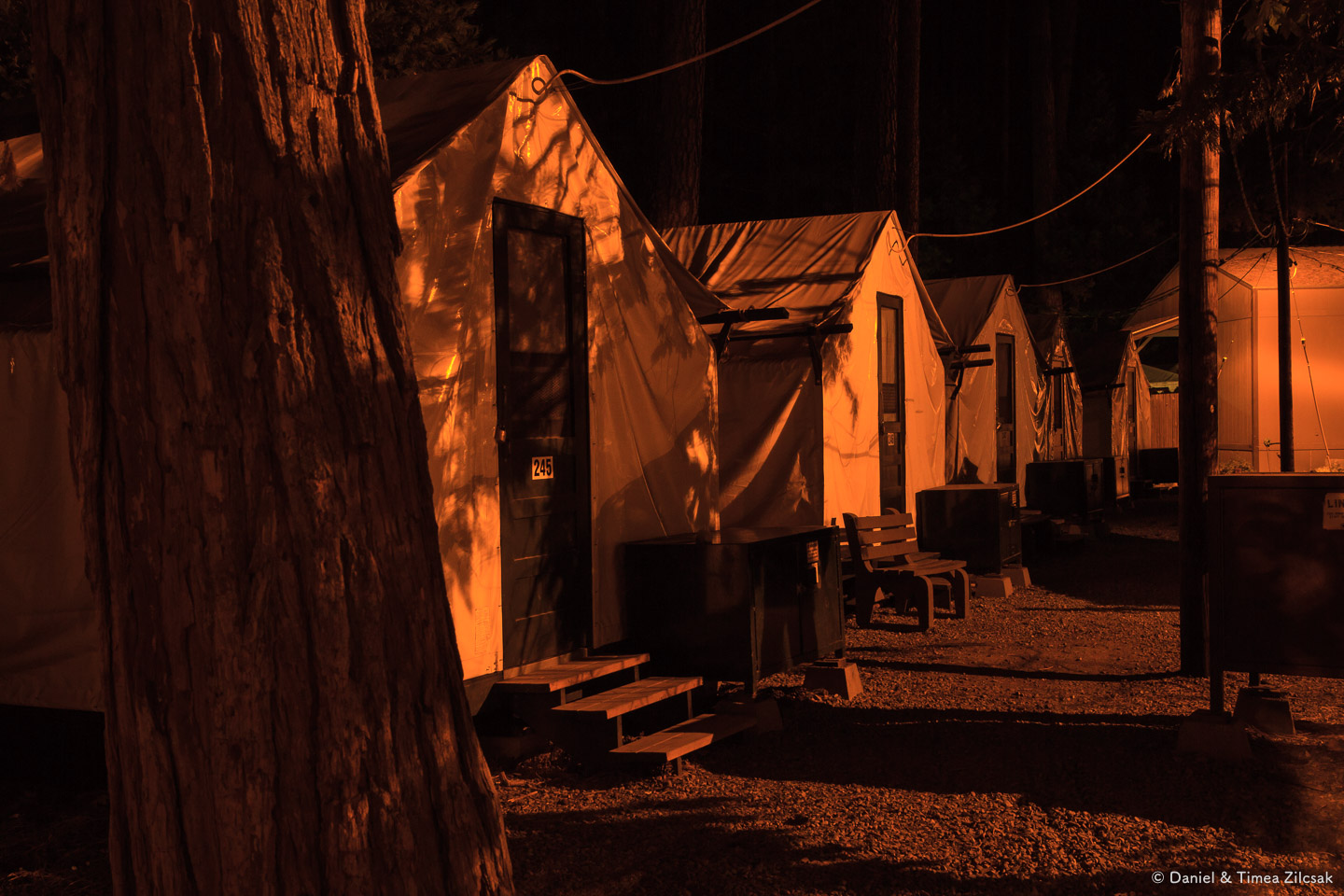 Tent cabins at Curry Village, Yosemite Valley