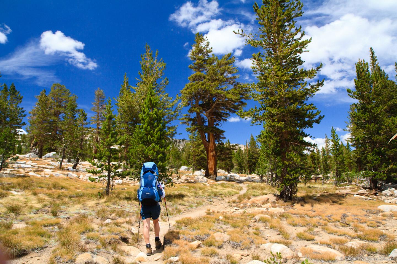 Yosemite alpine zone above 10000ft