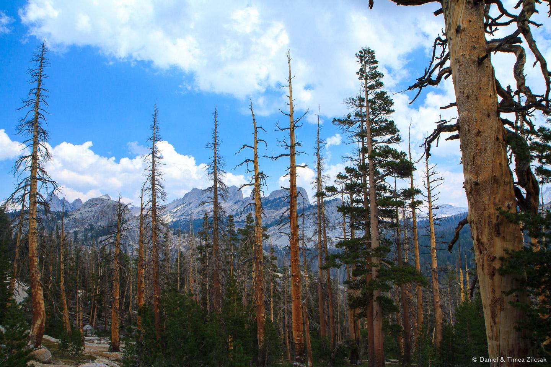 Cathedral Range with its razor sharp peaks, Yosemite National Park