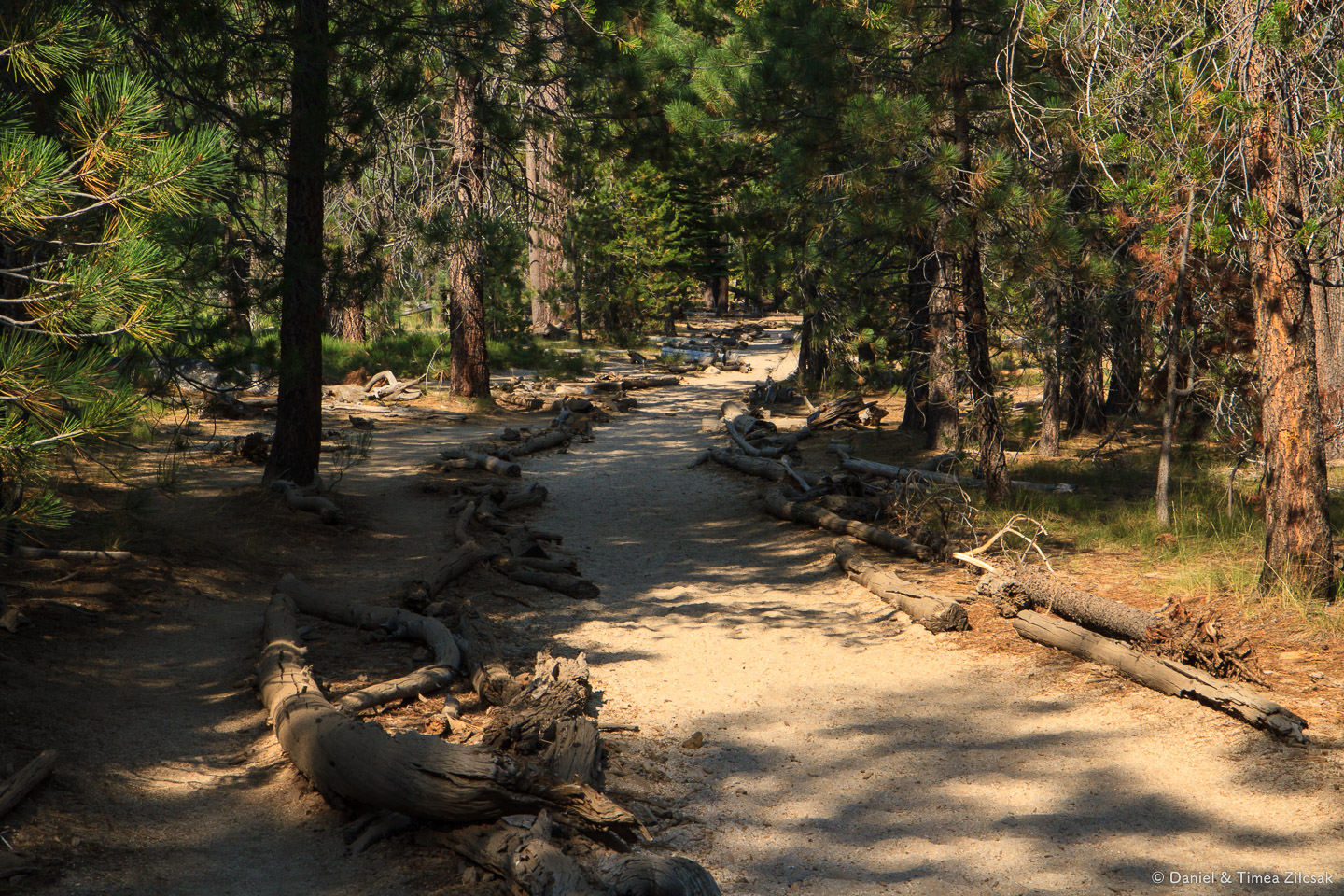 Section of trail in Little Yosemite Valley, near the campground where we spent two nights
