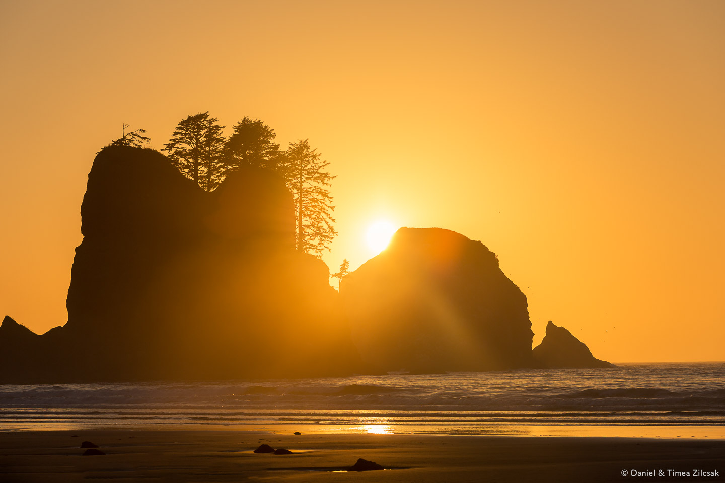 Before sunset at Shi Shi Beach and Point of the Arches, Olympic