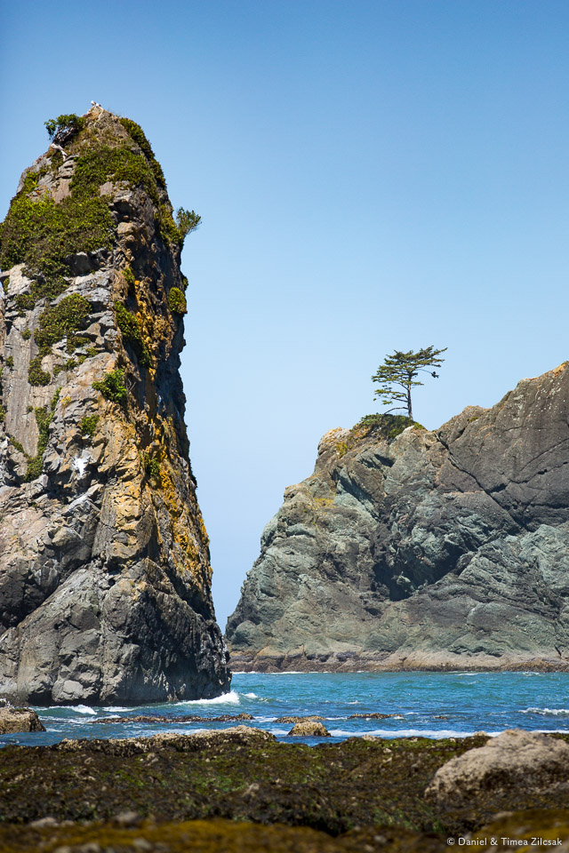 Point of the Arches, Olympic Peninsula