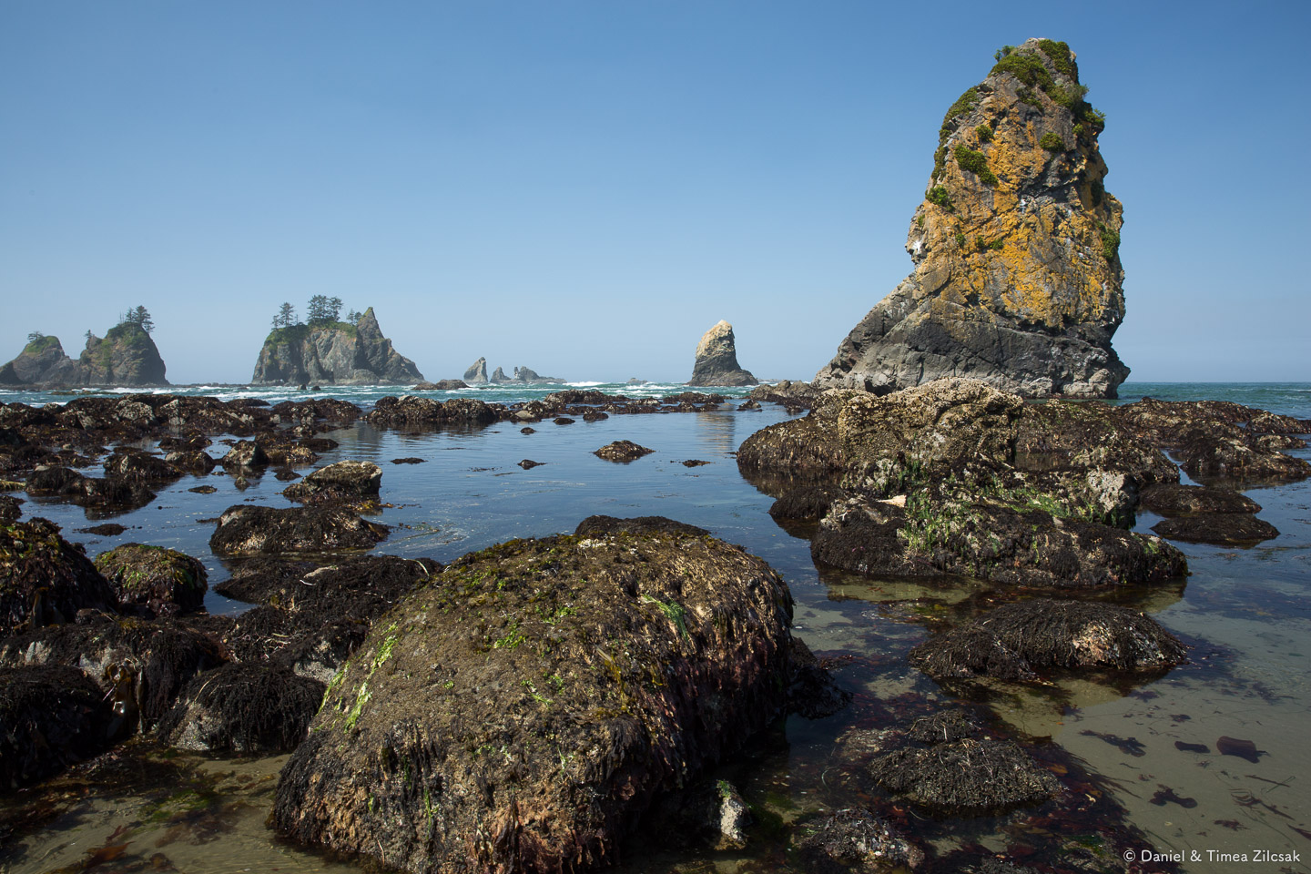 Hiking around Point of the Arches, Olympic Peninsula